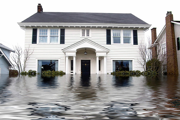 Chem-Dry of Bellingham Provides Water Damage Restoration Services To Restore Your Home From Intense Water Damage in Bellingham Wa and Surrounding Areas