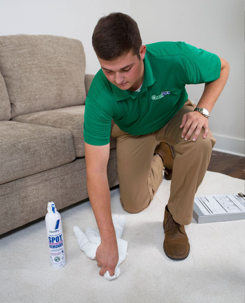 Chem-Dry of Bellingham Carpet Stain Removal Attacks and Eliminates Stubborn Stains in Bellingham Wa and Surrounding Areas