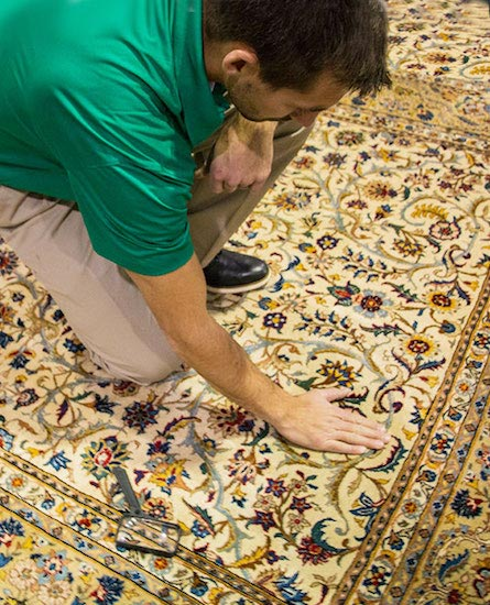 Professional Area and Oriental Rug Cleaning by Chem-Dry of Bellingham Cleans To Restore Design and Color